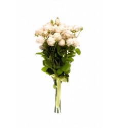 Букет из 5 белых кустовых роз «Крылья ангела»