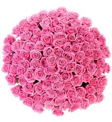 Букет из 365 розовых роз «Воздушный крем»