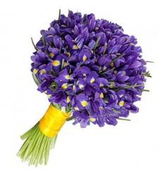 Букет из 101 ириса «Нежный фиолет»