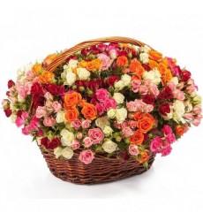 Корзина цветов со 101 кустовой розой «Солнечный лучик»