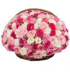 Букет из 101 пионовидной розы в корзине  «Праздник весны »