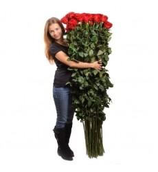 Букет из 25 красных роз «Пламя любви»