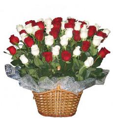 Букет-микс из 251 розы белого и красного цвета в корзине  «Верона»