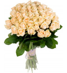 Букет из 51 кремовой розы «Жемчужина красоты»