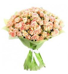 Букет из 55 бело-малиновых кенийских кустовых роз  «Искушение»