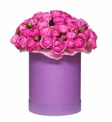 Букет из 61 пионовидной розы в шляпной коробке  «Влюбленный шляпник »