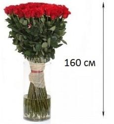 Букет из 101 розы 160 см. «Бархатный бонжур»