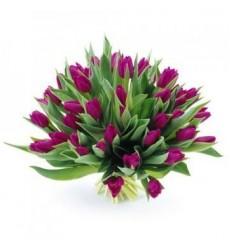 Букет из 37 фиолетовых тюльпанов «Королева весны»