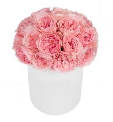 Цветы в коробке с 23 пионовидными розами Мария Тереза «Грация»