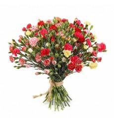 Букет из 51 кустовой гвоздики «Цветочный карнавал»