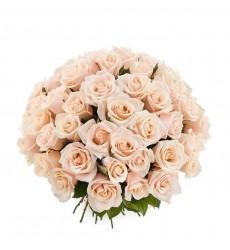 Букет из 25 кремовых роз и зелени «Нежная романтика»
