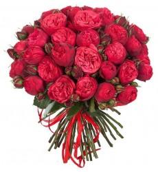 Букет из 15 роз Пиано «Суждено любить тебя»