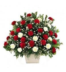 Корзина цветов с 31 красной и белой гвоздиками «Прекрасная королевна»