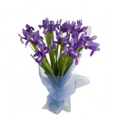 Букет из 11 ирисов «Яркий фиолет»