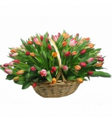 Корзина цветов с 81 разноцветным тюльпаном «Елисейские поля»