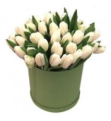 Цветы в коробке  с 51 белым тюльпаном «Светлые чувства»