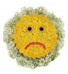 Цветочная композиция из 20 кустовых хризантем «Грустный смайлик»