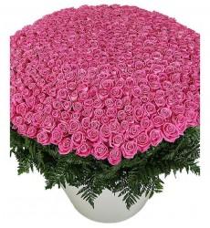 Цветочная композиция из 501 розовой розы и папоротника «Моему сокровищу»