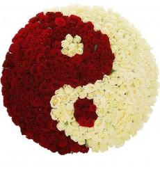 Цветочная композиция из 166 роз Гран При и 167 белых роз «Связанные судьбой»