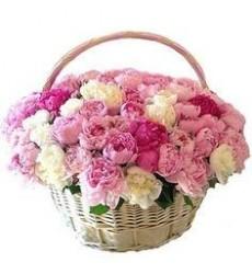Корзина цветов со 101 пионом «Цветочные эмоции»