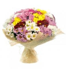 Букет из 25 кустовых хризантем «Шёлковый поцелуй»