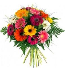 Букет из 19 разноцветных гербер «Красочные мотивы»