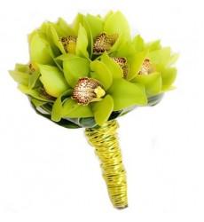 Букет из 11 орхидей «Созвездие нежности»