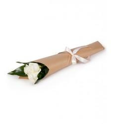 Букет из 3 белых роз «Беннетта»