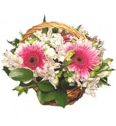 Корзина цветов с 5 герберами, 5 альстромериями и зеленью «Милая дева»