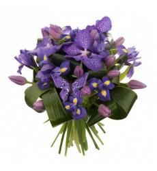 Букет из 12 тюльпанов, 7 ирисов и 3 цветов ванды «Фиолетовый пух»