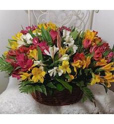 Корзина цветов с 19 разноцветными альстромериями «Цветочный шик»