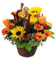 Корзина цветов с 3 подсолнухами, 7 герберами и 5 розами «Летняя Исландия»