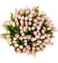 Корзина цветов со 101 розовым тюльпаном «Фигаро»