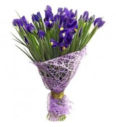 Букет из 31 ириса «Сияющий фиолет»