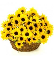 Корзина цветов с 31 подсолнухом «Летняя поэзия»