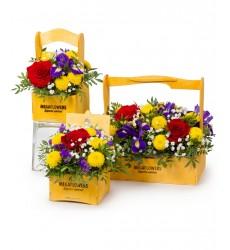 Цветы в коробке  с розами, статицей, хризантемами и зеленью «Альпийская горка»