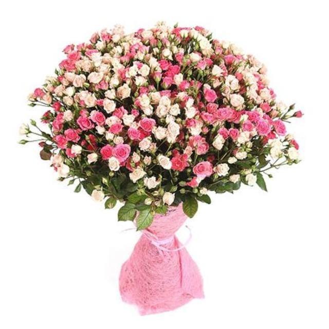 Букет из 45 бело-розовых кустовых роз «Ave Maria»
