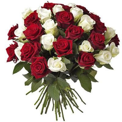 Букет из 31 белой и красной роз «Акапелла»