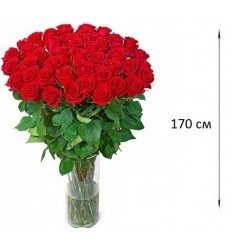 Букет из 51 красной розы  «Высокие чувства»