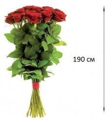 Букет из 5 красных роз  «Прикосновение»