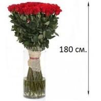 Букет из 41 красной розы «Признание»