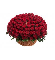 Траурная корзина №4 из живых цветов «200 бордовых эквадорских роз»