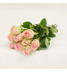 Букет из 9 нежно-розовых роз  « Возлюбленная »