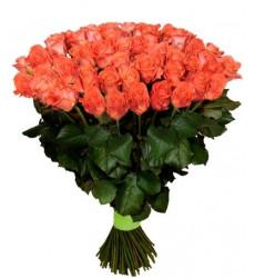 Букет из 41 розы кораллового цвета «Единственная моя »