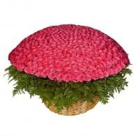 Корзина цветов с 501 розовой розой «Розовый рассвет»
