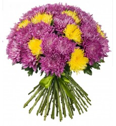 Букет из 51 одноголовой хризантемы «Хвост феи»