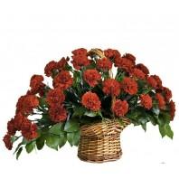 Корзина цветов с 51 красной гвоздикой «Цветочная поляна»