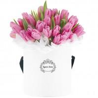 Цветы в шляпной коробке с 51 розовым тюльпаном «Эвридика»