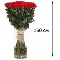 Цветы в коробке  с 9 жёлтыми розами и 5 макарони «Солнечная сладость»