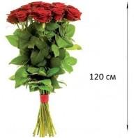 Букет  из 7 роз 120 см. «Признание в любви»